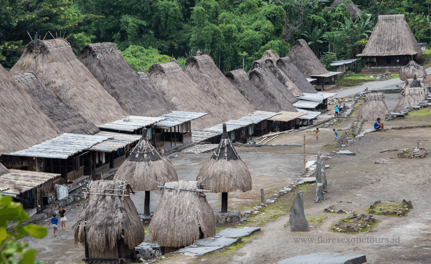 Adventure & Expedition, Komodo, Flores, Lembata, Alor,Timor,Bena Traditional village
