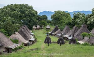 Belaraghi village,Ngada Regency