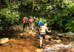 Borneo Adventure Tours
