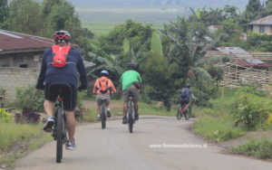 Cycling in Flores