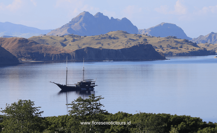 Explore Komodo National Park,Komodo tours