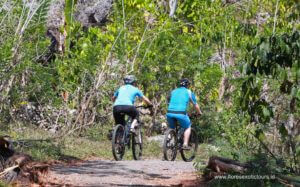Flores cycling