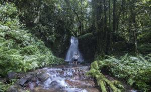 Komodo Flores adventure