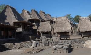 Komodo Flores experience Tours, Bena village,Flores island tours