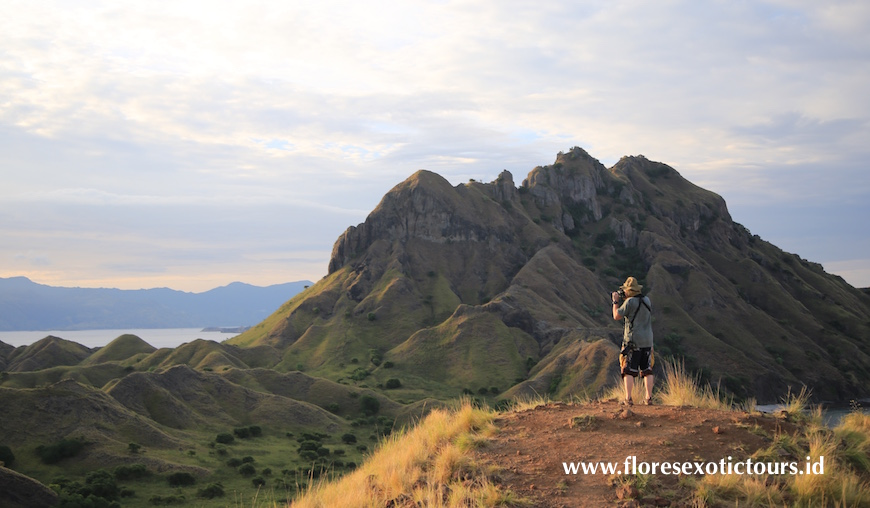 Komodo Photography Tours