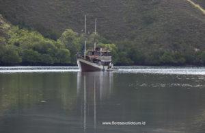 Komodo cruise