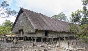 mentawai-siberut-west-sumatra-indonesia