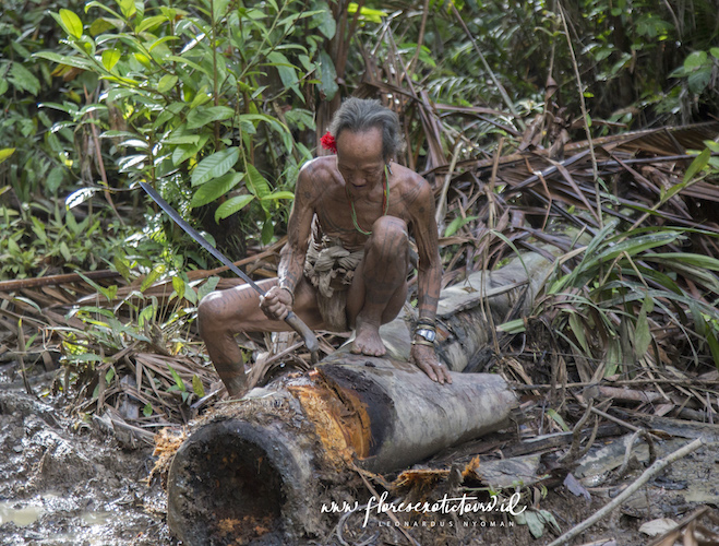 Siberut Adventure Tours