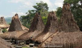 Sumba Flores Komodo