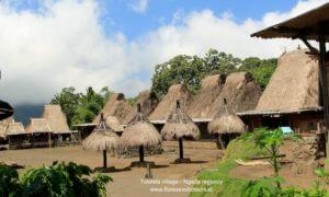 tololela,village,ngada