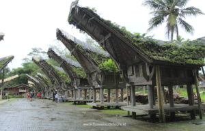 Toraja tours