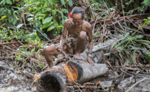 Mentawai islands, Siberut