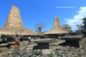 Tarung village - Sumba island
