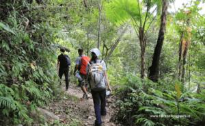 Wae Rebo Trekking