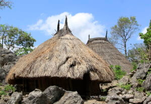 West Timor, timor traditional house