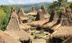 Explore East Indonesia