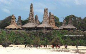 Hightlights of Sumba