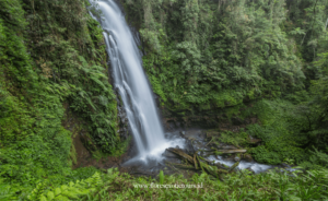 Cunca Rede Waterfall - Flores island