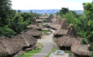 Sumba adventure tours, Praiijing village,Sumba island