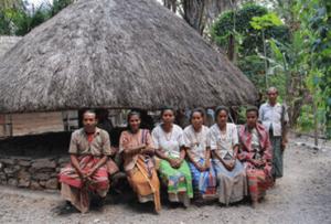 Timor island tours