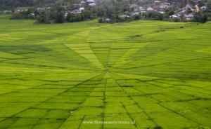 Explore East Indonesia - Sumba - Flores - Komodo