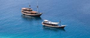 Komodo boat for charter