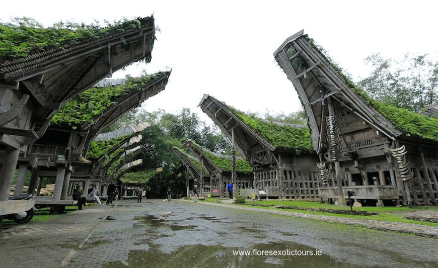 Sulawesi Adventure Tours