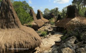 Sumba-Highlights-tours - Indonesia