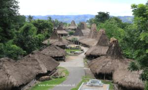Sumba tours