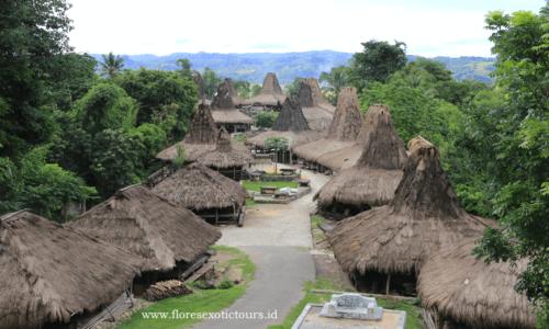 Sumba adventure tours